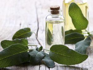 Olio essenziale di Salvia: che cos'è, proprietà, benefici, utilizzi e controindicazioni