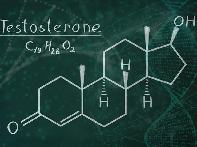 Testosterone: cos'è, a cosa serve e valori normali