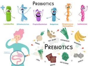 Probiotici e Prebiotici: Differenze? Cosa sono?