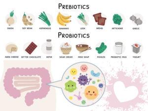 Migliori probiotici e prebiotici